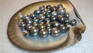 perle-negre-2.jpg