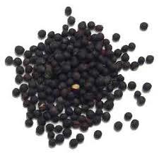 Mustarul negru