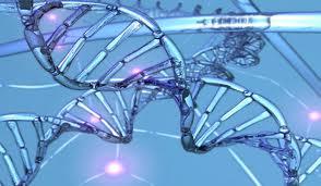 Amprenta genetica