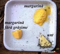 Furnicile-nu-se-ating-de-margarina-