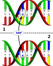 Markeri genetici