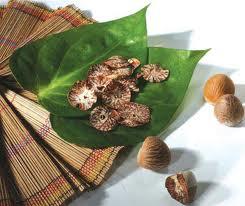 Frunze de betel si nuci de areca