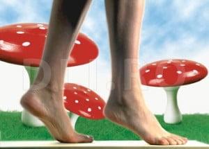 Micoza piciorului