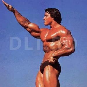Arnold - un standard in culturism