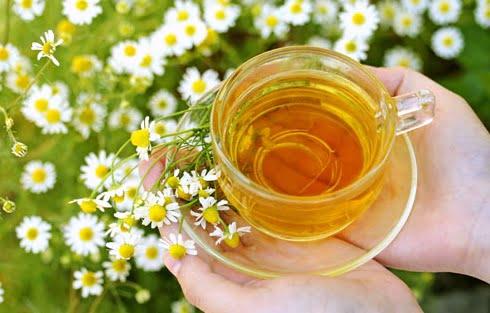 Ceai de mușețel, Foto: chemicalfreelife.tumblr.com