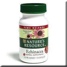Echinacea, Foto: hamid-arshat.blogspot.ro