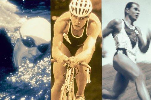 Sport, Foto: 3.bp.blogspot.com