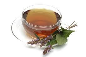 Menta-coreeana (Agastache rugosa), Ceaiul