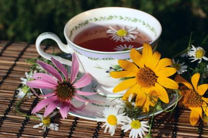 Ceai de plante medicinale, Echinacea, Foto: healthyandfabulous.com