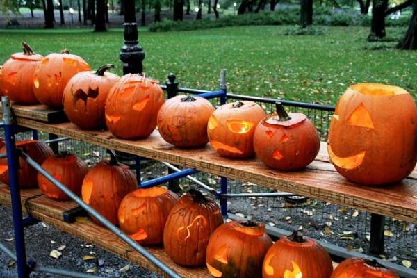 Dovleac de Halloween, Foto: blog-pt.hostelbookers.com