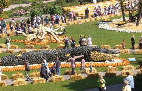 Festivalul dovleacului din orasul L, Foto: stuttgartcitizen.com