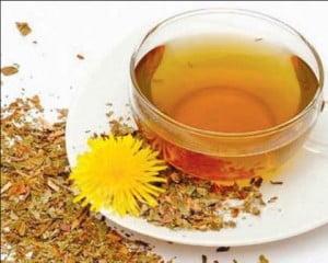 ceai de papadie pentru slabit contraindicatii