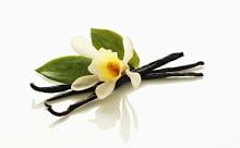 Batoane de vanilie naturala din orhidee, Foto: vanillamamasstuff.blogspot.ro