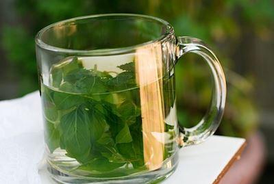 Ceai din frunze de busuioc, Foto: biljke-kao-lijek.blogspot.ro