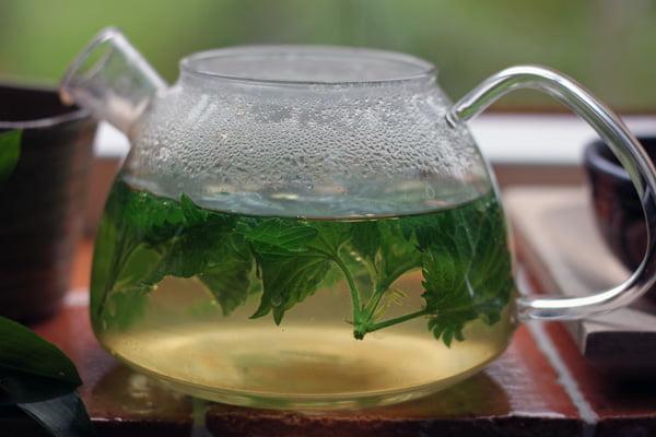 Ceai de urzica, Foto: flattummyclub.blogspot.ro