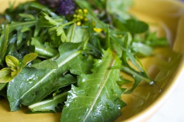 Salata din frunze de papadie, Foto: mixedgreensblog.com
