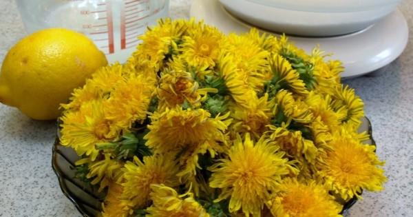 Ingredientele pentru sirop, Flori de papadie, lamaie, apa si zahar, Foto: nax.maiapart.com