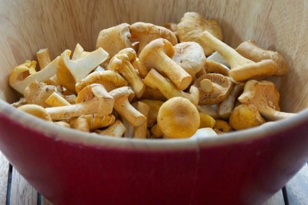 Ciupercile Chanterelle, Foto: langdoncook.com