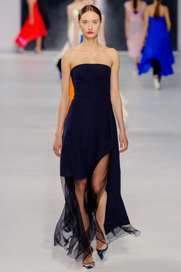 Rochie Christian Dior, Foto: got-blogger.com