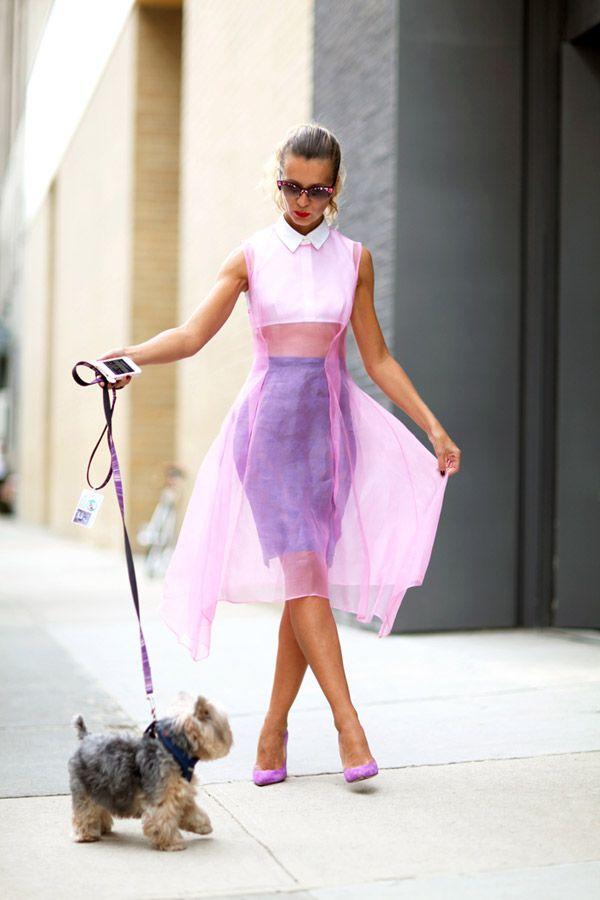 Tendințele modei din acest an, Foto: maniacmagazine.com