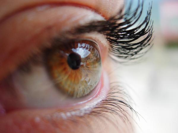 Nutrienți pentru prevenirea căderii genelor, Foto: vitaminsforhairlossguide.com