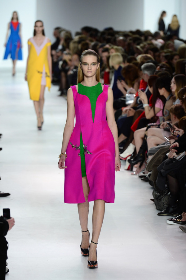 Rochie Christian Dior, Foto: mydaily.co.uk