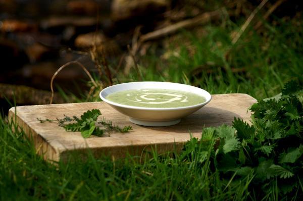 Supa, Foto: blog.brooklodge.com