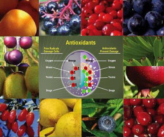 Surse naturale de antioxidanți, Foto: elixirultineretii.wordpress.com