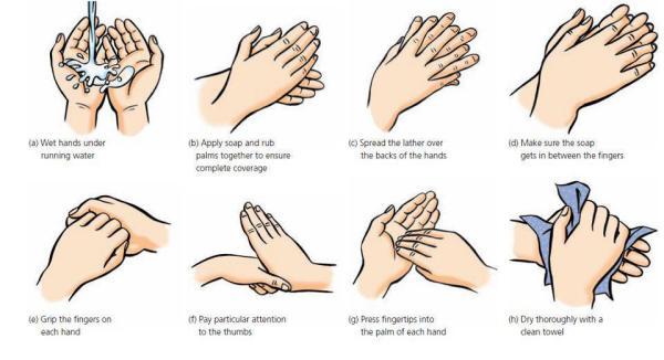 Igiena mâinilor, Foto: cdifffoundation.org