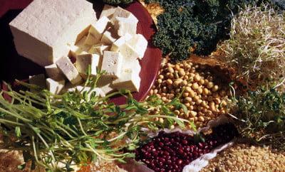 Surse alimentare de glutamină, Foto: melinda-angel.blogspot.ro