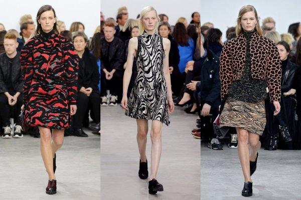 Tendințele modei în anul 2014, colecția Proenza Schouler, Foto: veooz.com