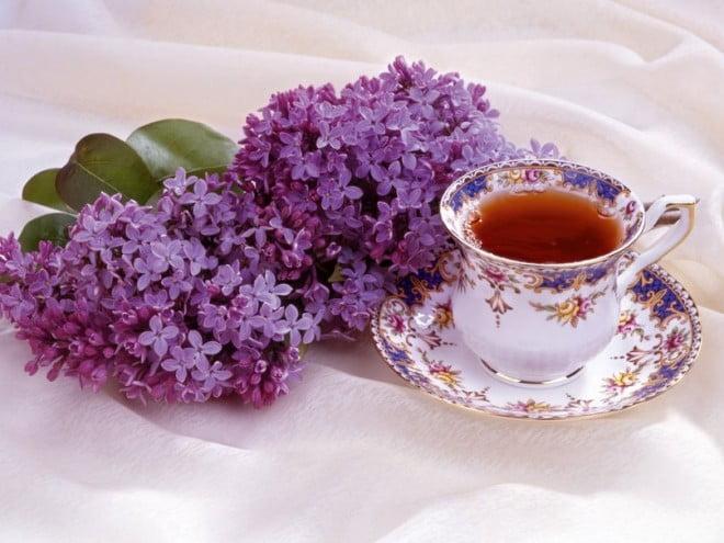 Infuzia din flori de liliac, Foto: cn.forwallpaper.com