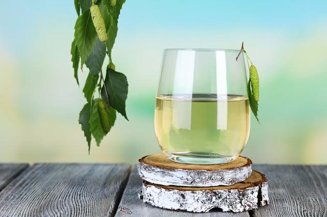 Seva de mesteacăn, o băutură naturală cu proprietăți foarte bune pentru organism, Foto: aif.ru