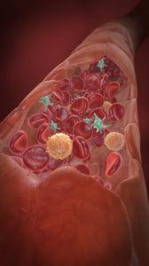 Histidina scade tensiunea arterială, Foto: better-erection.com