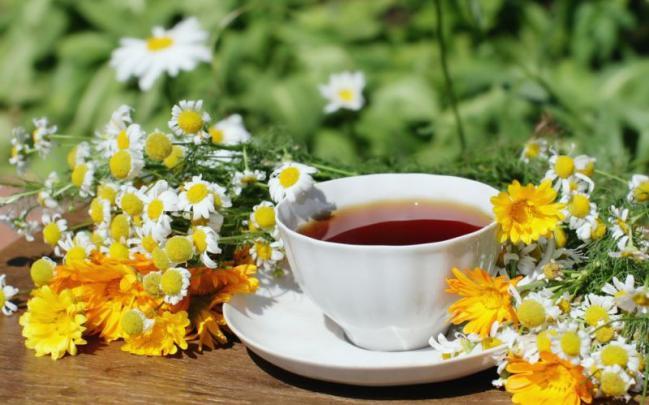 Plante medicinale - mușețel și gălbenele, Foto: terapiesagranollers.blogspot.com
