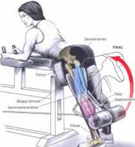 Flexia gambei cu greutăți din poziția în picioare, Foto: henrysamenezes.blogspot.com
