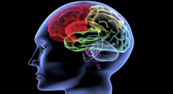 Disfuncții cognitive și motorii