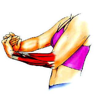 Exercițiul 4 - Pentru întinderea mușchilor extensori, Foto: cexams.net