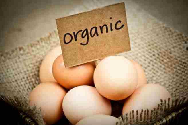 Ouăle - un mic dejun excelent, Foto: foodforlifescotland.org