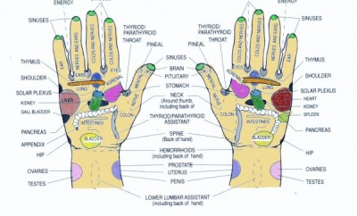 Reflexologia la palme - terapie naturală, Foto: vivmassage.com