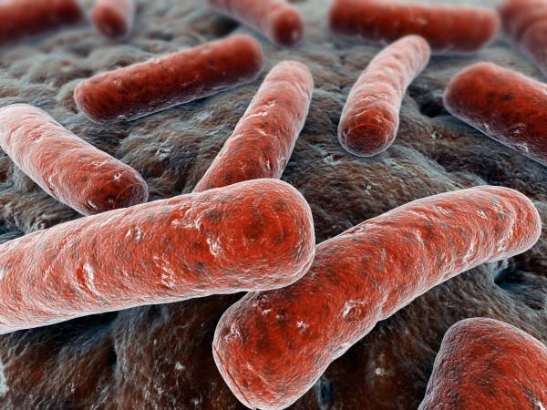Tuberculoza - infecția cu bacilul Koch, Foto: i2.wp.com