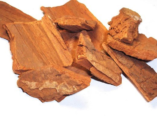 Pausinystalia johimbe, scoarța, Foto: 2.bp.blogspot.com