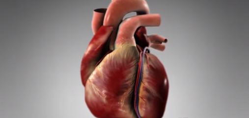 Insuficiența cardiacă stângă acută
