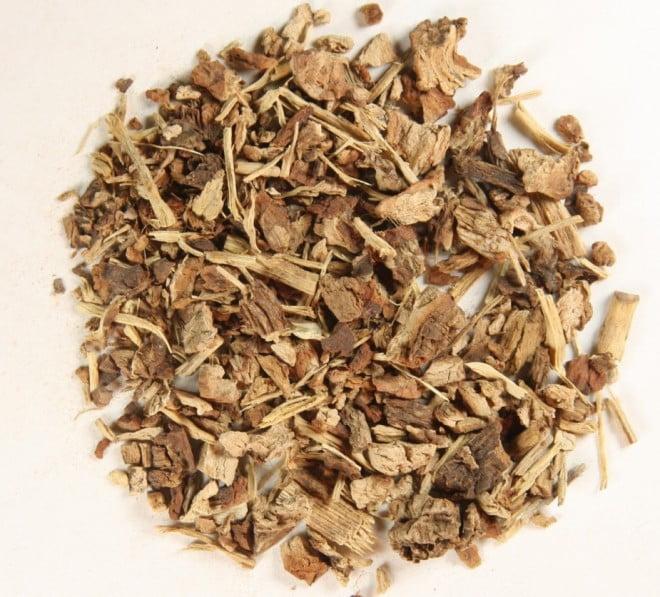 Sarsaparilla, rădăcină, Foto: earthly-medicine.com