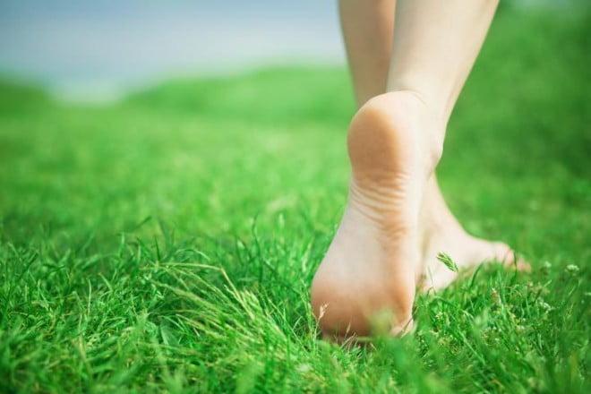 Călcatul prin iarba udă, Foto: big-blog.bigdmowing.com