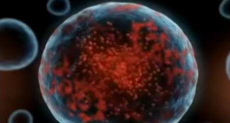 Celulele corpului produc radicali liberi din cauza stresului oxidativ
