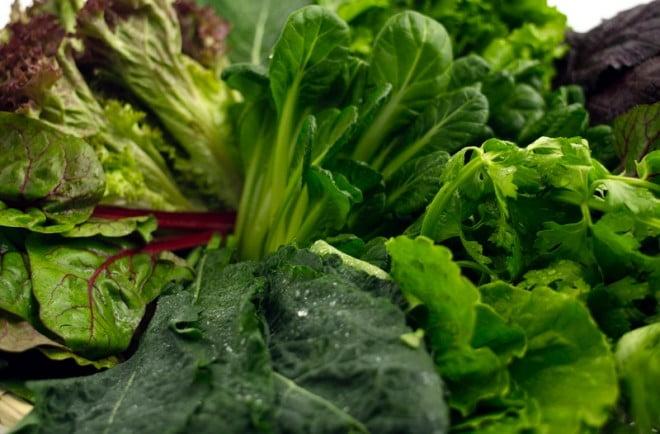 Plante verzi care conțin clorofilă, Foto: blog.nativefoods.com
