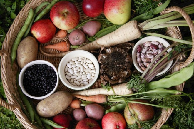 Dieta bogată în fibre, Foto: animalworld.com.ua