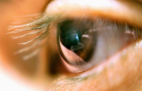 Vedere tulbure, Foto: a397.idata.over-blog.com