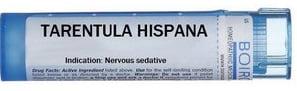 Tarentula hispanica - produs homeopatic, Foto: homeremedycentral.com